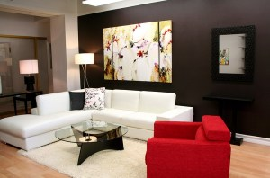 Red Accent Contemporary Living Rooms